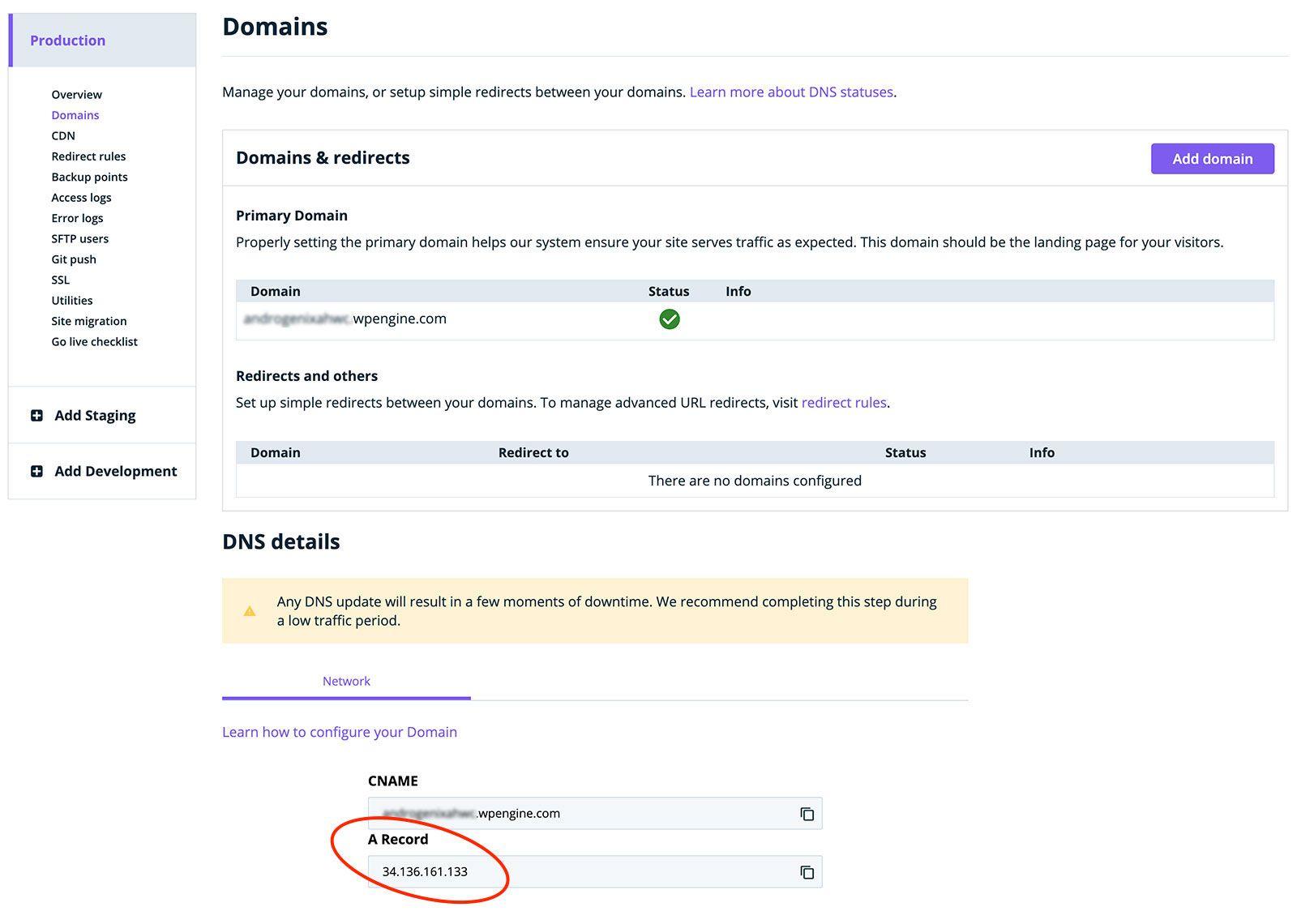 Domains Tab: A Record